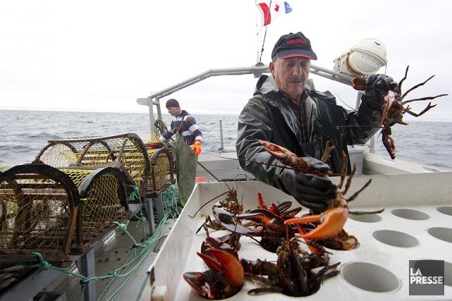 Des pêcheurs de homard aux Îles-de-la-Madeleine... (Robert Skinner, archives La Presse)
