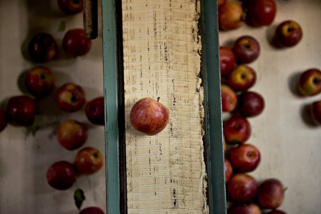 Le ministère de l'Agriculture, des Pêcheries et de... (Photo Daniel Acker, archives Bloomberg)