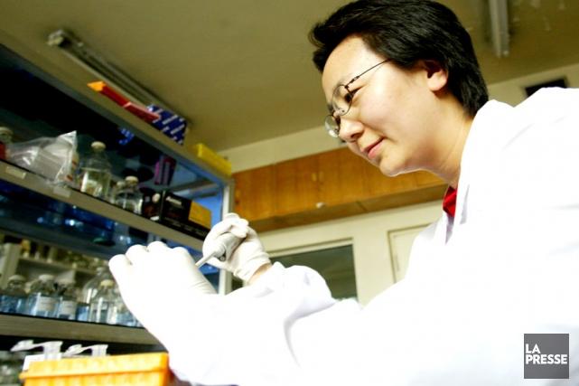 La chercheureChen Hualan qui a participé à l'élaboration... (Photo: National Avian Influenza Reference Laboratory, Harbin)