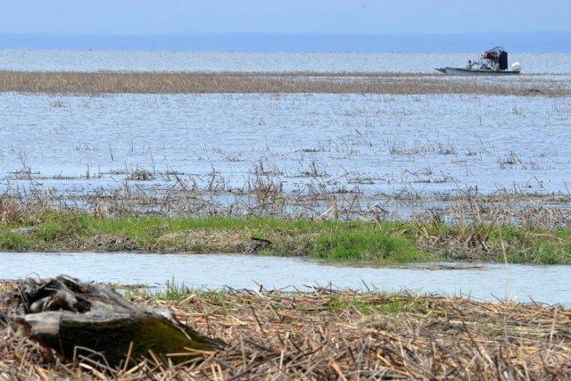 Les pêcheurs sont nombreux sur les cours d'eau du Québec depuis que le beau... (Photo: Stéphane Lessard)