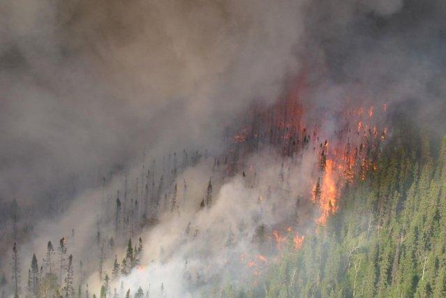 Neuf incendies ont fait rage dans la province... (Photo Archives La Presse)