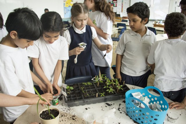 Fabriquer du papier recyclé ou faire des semis... (Photo: Ninon Pednault, La Presse)