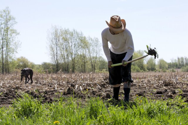 Pat a profité des beaux jours pour préparer... (Photo Alain Roberge, La Presse)