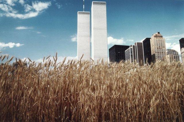 Un champ de blé aux pieds du World... (Photo fournie par le MOMA)