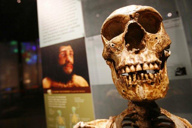 D'après l'archéologie et la génétique, l'homme anatomiquement moderne,... (PHOTO SHANON STAPLETON, ARCHIVE REUTERS)