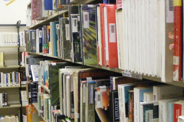 Cette année encore, les bibliothèques de Montréal vont à la rencontre des... (PHOTO SAMUEL BLAIS-GAUTHIER, ARCHIVES LE DROIT)