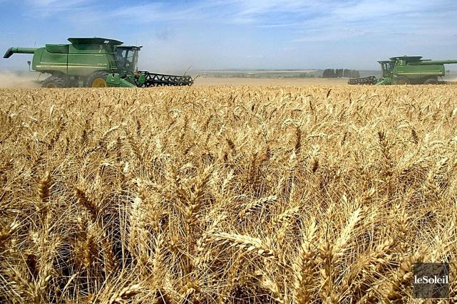 L'un d'entre eux, l'herbicide 2,4-D, se retrouve dans... (Photothèque Le Soleil)