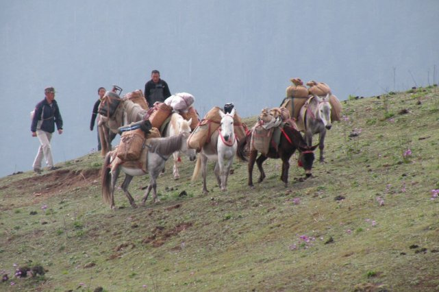 Les électeurs du Bhoutan ont dû choisir un... (PHOTO ANDRÉ DÉSIRONT, ARCHIVES LA PRESSE)