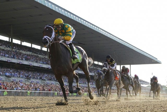 Chevauché par le jockey Mike Smith, Palace Malice... (PHOTO GARY HERSHORN, REUTERS)