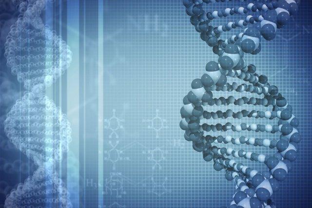 L'ADN humain est un produit de la nature... (PHOTO PHOTOS.COM)