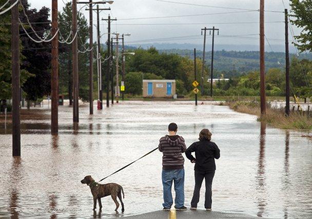 Dégâts à Terre-Neuve après le passage de l'ouragan... (Photo Keith Gosse, PC)