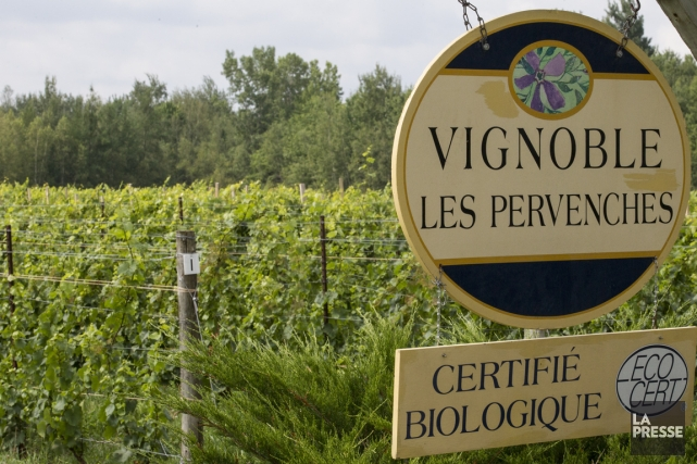 Le domaine Les Pervenches fait partie des 17... (Photo archives La Presse)