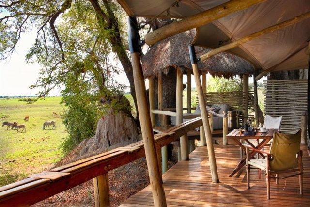 Mombo Camp au Botswana a été élu meilleur... (Photo fournie par Mombo)
