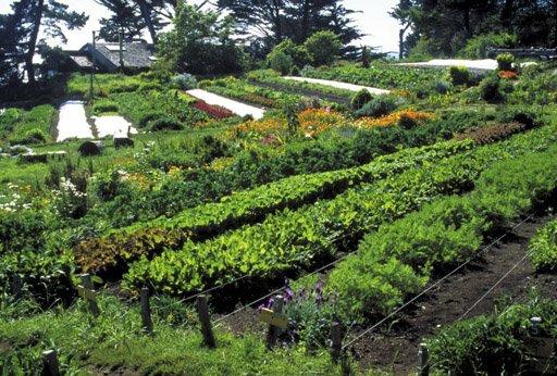 Pour la première fois de son histoire, la Convergence de permaculture du...
