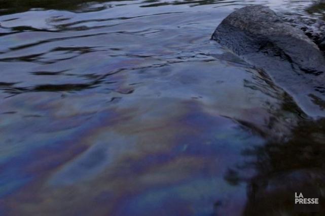 La contamination de la rivière Chaudière serait-elle plus grave que ne le... (PHOTO OLIVIER PONTBRIAND, LA PRESSE)