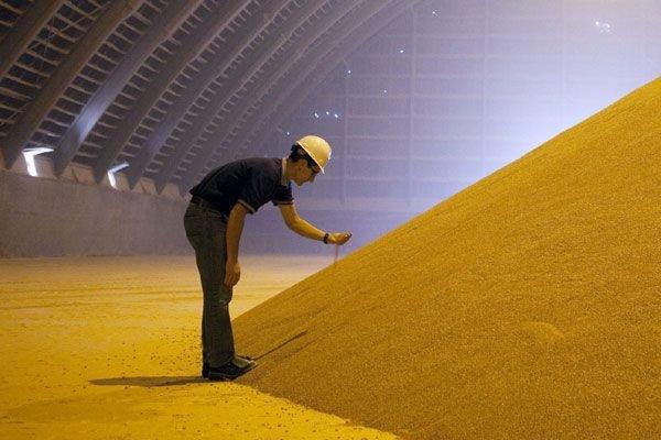 Les prix de la potasse ont fortement chuté... (Photo Reuters)