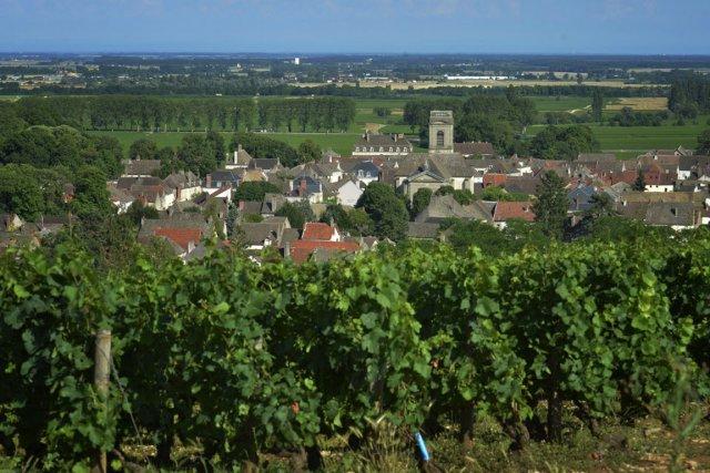 La production de vin en France est attendue en hausse de 11% cette année par... (PHOTO JEFF PACHOUD, AFP)