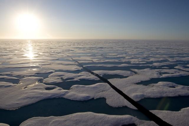 Selon Greenpeace, les sociétés pétrolières sont prêtes à... (Photo Jonathan Hayward, archives La Presse Canadienne)