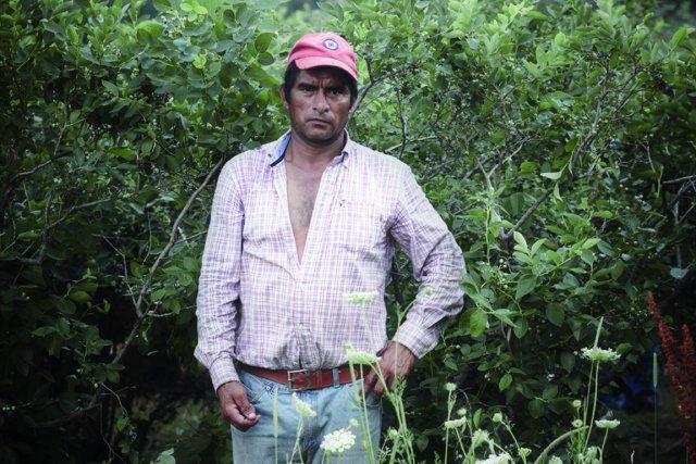 Pour venir travailler ici, Mexicains, Guatémaltèques ou Honduriens... (Photo Rodolphe Beaulieu-Poulin (Collectif Hors D'État))
