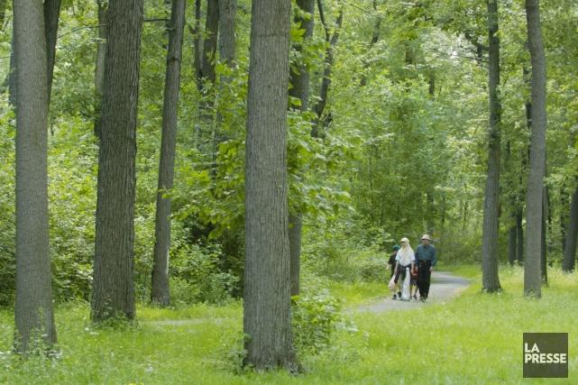 Parc Angrignon Montreal Aménagé au Parc Angrignon