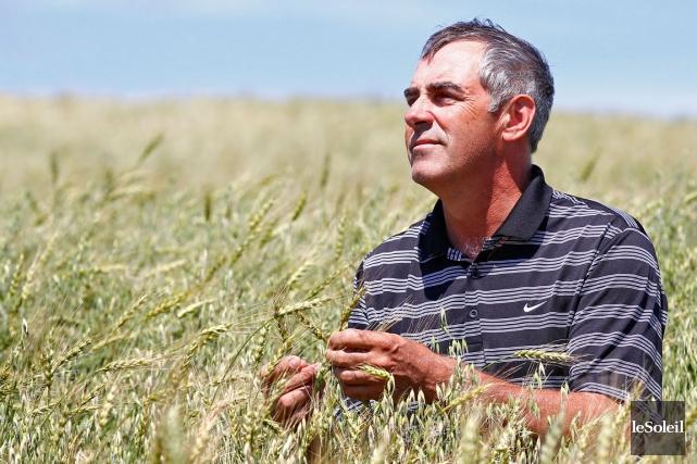 Marcel Groleau, président de l'Union des producteurs agricoles... (Photothèque Le Soleil, Yan Doublet)