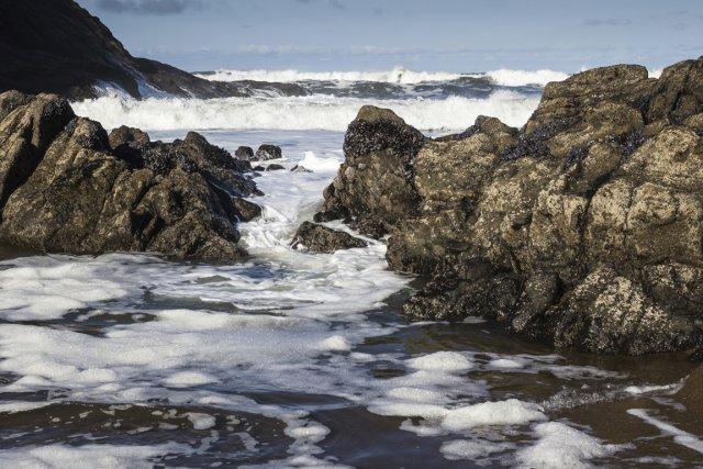 D'autres géants pourraient sommeiller loin sous la mer,... (Photos.com)