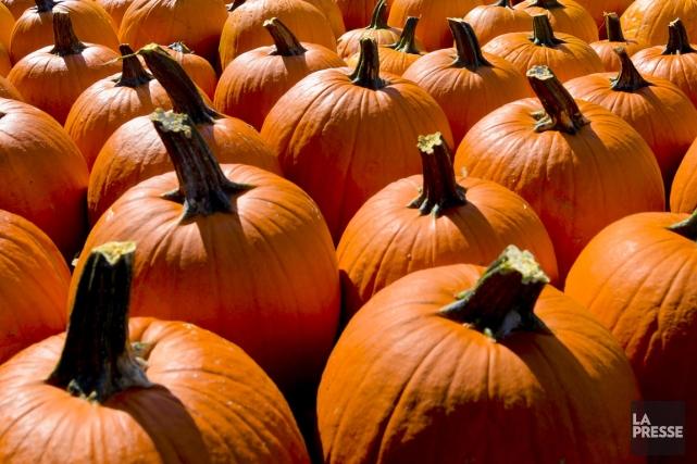 L'automne sera à l'honneur le 29 septembre dans l'arrondissement de... (Archives La Presse)