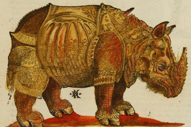 L'image culte du Parti rhinocéros semble représenter une...