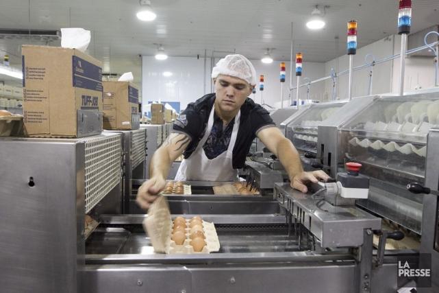 Pour tirer leur épingle du jeu, les PME... (PHOTO HUGO-SÉBASTIEN AUBERT, ARCHIVES LA PRESSE)
