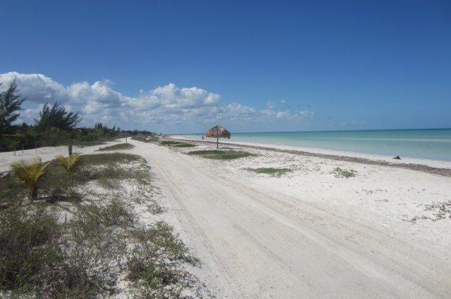 La plage à perte de vue... (Collaboration spéciale Mylène Moisan)