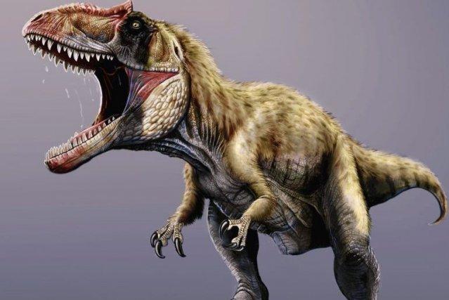Un nouveau g ant dans la famille des dinosaures carnivores - Liste dinosaures ...
