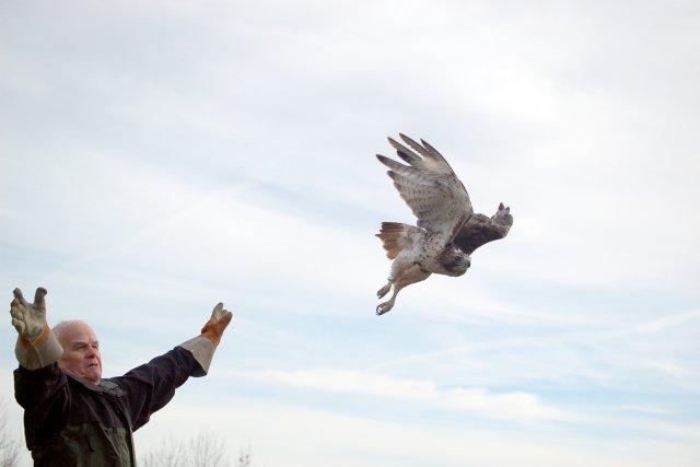 Va, tu es libre!... (Photo Dr Guy Fitzgerald)