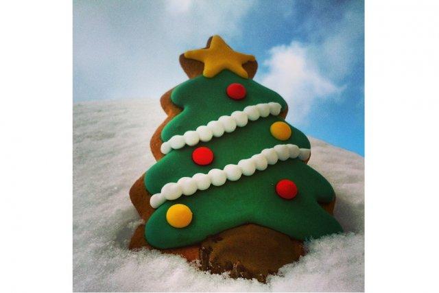 Projet clic biscuits et cupcakes le soleil le soleil - Sapin qui perd pas ses aiguilles ...