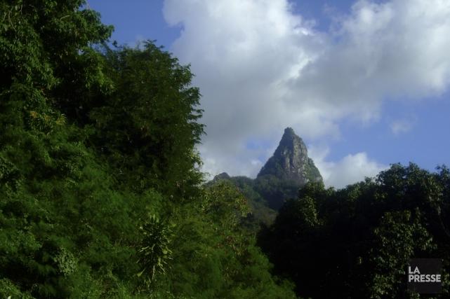 Les pics d'Ua Pou s'élèvent au-dessus d'une végétation... (Photo Andrée Lebel, La Presse)