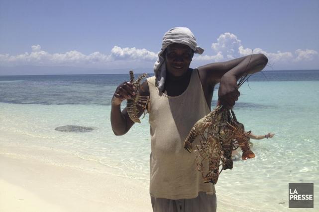 Un pêcheur de langouste à l'Anse-aux-Raisins, en Haïti.... (Photo Chantal Guy, archives La Presse)