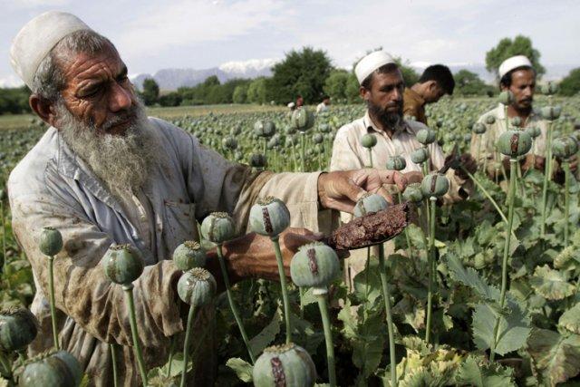 Le trafic international de drogue à partir de... (Photo: AP)