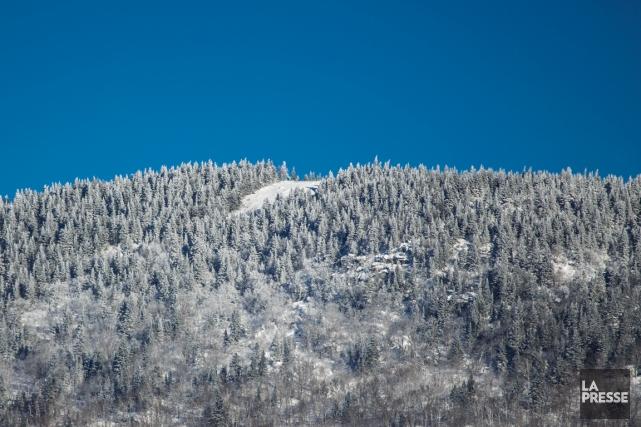 La scierie Groupe Crête s'est vu délivrer un... (Photo Olivier Pontbriand, La Presse)