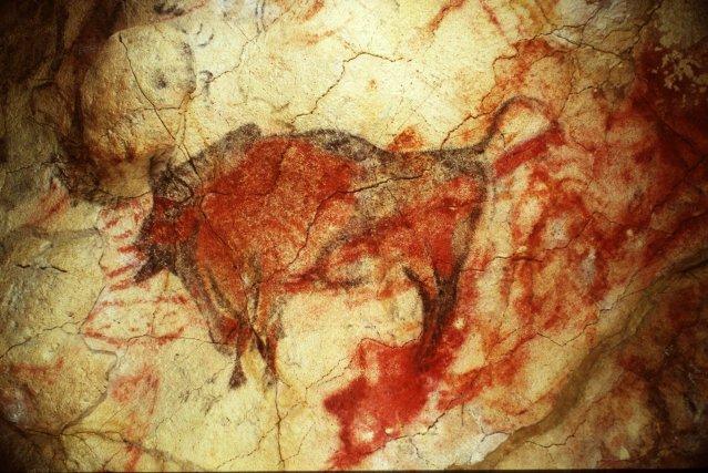 La grotte d'Altamira et a été découverte en... (Photo PEDRO A. SAURA, AP)
