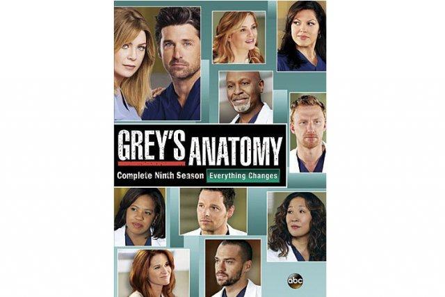 Oui, il y a un bon moment que la neuvième saison de Grey's Anatomy (24 épisodes...