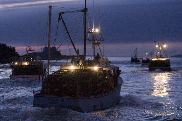 Si le Parlement européen n'a pas interdit en décembre le chalutage en eaux... (Photo Andrew Vaughan, La Presse Canadienne)