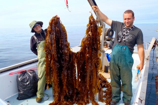 Le centre d'innovation de l'aquaculture et des pêches... (Photo fournie par Merinov)