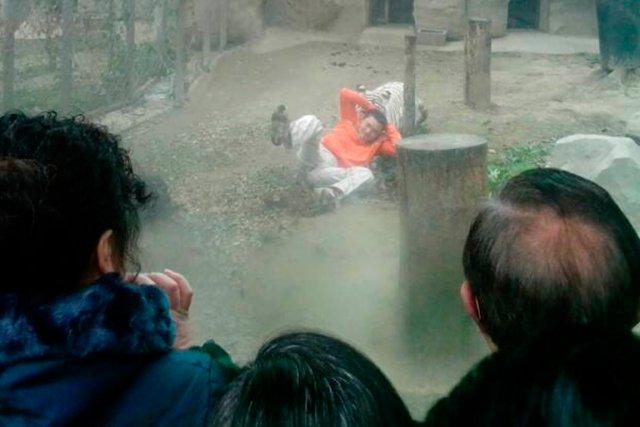 Sous le regard stupéfait des visiteurs du zoo... (Photo Reuters)