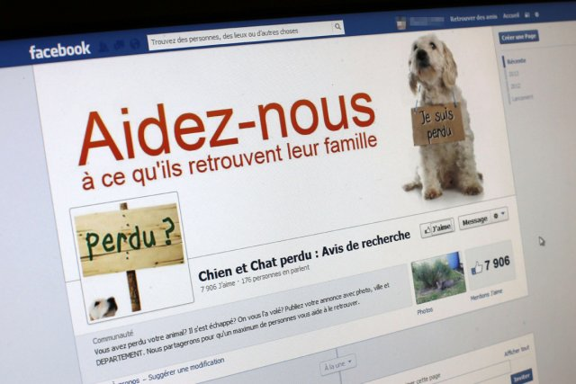 Pet Alert, Soschienperdu.com, Animalerte.org... En France, des réseaux sociaux... (PHOTO AGENCE FRANCE PRESSE)
