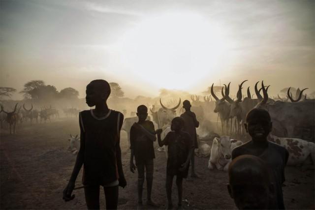 Selon les estimations de l'Organisation mondiale de la... (PHOTO FABIO BUCCIARELLI, archives AFP)