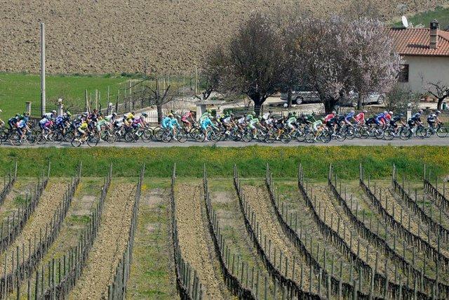 Plusieurs des coureurs ont participé à la course... (Photo Fabio Ferrari, AP)