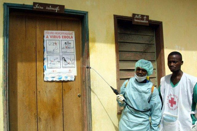 Aucun traitement ne peut guérir cette fièvre. Seules... (Archives AFP)