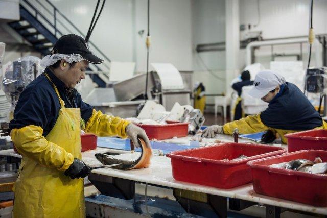 Même si deux nouveaux emplois sur trois sont... (Photo Abigail Saxton, Bloomberg)