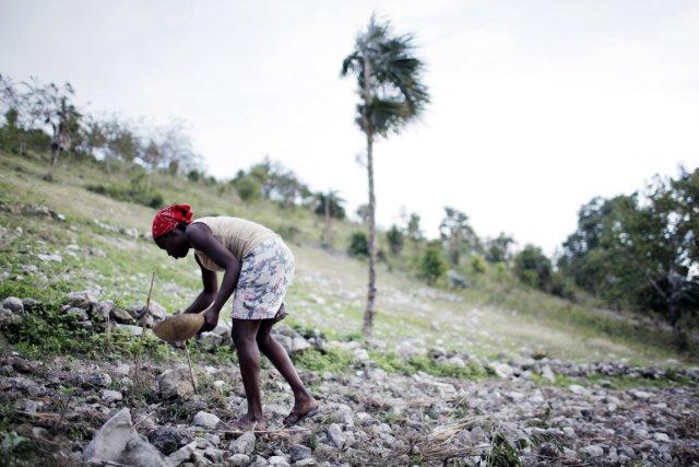 Haïti a notamment demandé à la France de... (PHOTO  DAMON WINTER, ARCHIVES THE NEW YORK TIMES)