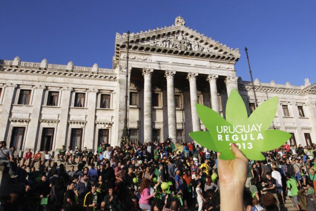 Les prisonniers de l'Uruguay pourront obtenir de la marijuana derrière les... (Photo: Reuters)