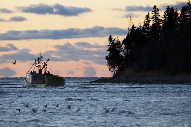Le ministère fédéral des Pêcheries suggère d'offrir à... (Archives PC)